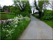 H4869 : Edenderry Road at Bloody Bridge by Kenneth  Allen