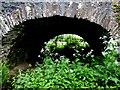 "H4869 : ""Dry arch"", Bloody Bridge by Kenneth  Allen"