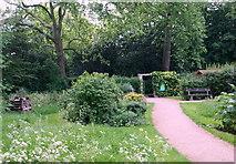 TQ2882 : Community Wildlife Garden, Regent's Park NW1 by David Hallam-Jones