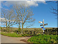 NY6140 : Signpost between Gamblesby and Unthank by Rose and Trev Clough