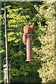 NJ4516 : Red squirrel on the bird feeder by Graham Hogg