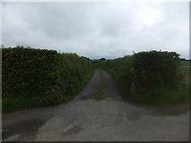 SX6195 : Farm track to Stockley by David Smith