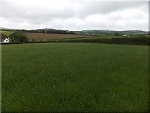 SX6195 : Field north of Gypsy Corner Cross by David Smith