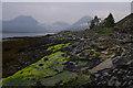 NG5720 : Foreshore, Loch Slapin by Ian Taylor