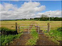 H2081 : Gate, Magheranageeragh by Kenneth  Allen
