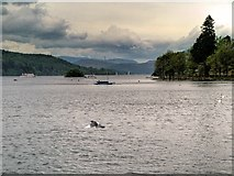 SD4096 : View North from Bowness Bay by David Dixon
