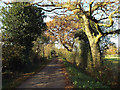 SP0575 : Lane to Big Forhill Farm, Forhill by Robin Stott