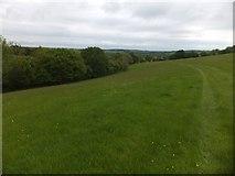 SX6497 : Devonshire Heartland Way crossing a large field near Halford by David Smith