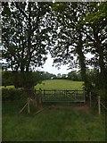 SX6497 : Gate on the Devonshire Heartland Way near Halford by David Smith