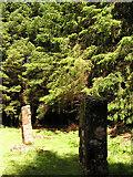 NM4352 : Kilmore Standing Stones by Stuart Wilding