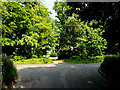 TM1071 : Thornham Road, Thornham Magna by Adrian Cable
