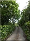 SX6596 : Bridge over Taw at Taw Green by David Smith