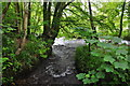 SS9028 : West Somerset : Small Stream by Lewis Clarke