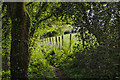 SS9127 : West Somerset : Footpath by Lewis Clarke