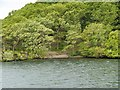 NY3701 : Windermere Shore, Inlet near Watbarrow Point by David Dixon