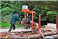 NS0373 : Sawmill work, forest above Rhubodach (2) by Jim Barton