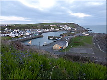 NW9954 : Portpatrick Harbour by David Redwood