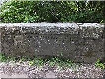 SS6500 : Plaque on Newland Bridge by David Smith