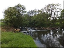 SS6500 : Weir on River Taw by David Smith