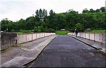 O0875 : St. Dominick's Bridge (1), Drogheda, Co. Louth by P L Chadwick