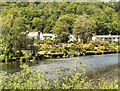 SD3585 : River Leven, Backbarrow by David Dixon