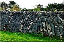 M2300 : County Clare - R480 - Poulnabrone Dolmen Site - Burren Wall by Suzanne Mischyshyn