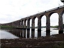 NT9953 : The Royal Border Bridge by James Denham