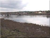 NT9953 : A view down the Tweed to the Royal Tweed Bridge by James Denham
