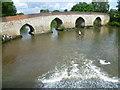 TQ6949 : Twyford Bridge, Yalding by Marathon