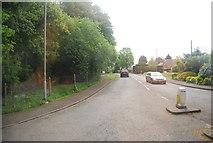 TQ5130 : Mill Lane by N Chadwick