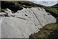 G5888 : Periglacial Polygons by Anne Burgess