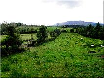 G9829 : Cordressogagh Townland by Kenneth  Allen