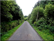 G9830 : Road at Tullynamoyle by Kenneth  Allen