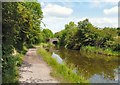 SJ9393 : Peak Forest Canal by Gerald England