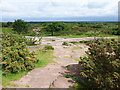 SJ2484 : Thurstaston Hill by Oliver Dixon