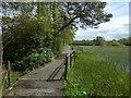 NS3084 : Path around pond by Lairich Rig