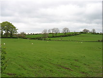 NY0724 : Farmland near Ullock by David Purchase
