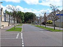 NT3366 : St David's Avenue by Oliver Dixon