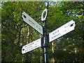 NT6172 : East Lothian County Council Fingerposts : Oak Corner, Yarrow (detail) by Richard West