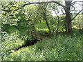 SJ2533 : Footbridge on Offa's Dyke Path by Row17