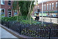 TA0928 : Vegetable garden in Hull City Centre by Ian S