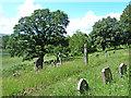 NY5218 : Graveyard, Bampton Grange by Oliver Dixon