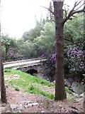 J3629 : Craignagore Bridge/Glen River Bridge - the second highest bridging point on the Glen River by Eric Jones