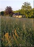 TQ1450 : Hilltop grassland at Ranmore by Stefan Czapski