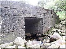J3629 : Sonny's Bridge - the highest bridging point on the Glen River by Eric Jones