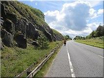 C7535 : Uphill by Richard Webb