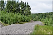NM9617 : West Loch Awe Timber Haul Route in Inverinan Forest by Patrick Mackie