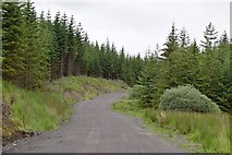 NM9717 : West Loch Awe Timber Haul Route in Inverinan Forest by Patrick Mackie