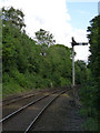 SJ9385 : Norbury Hollow Crossing Up Home signal by Alan Murray-Rust