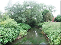 SO8483 : River Stour, Kinver by Chris Whippet